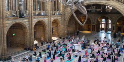 Yoga 5 square
